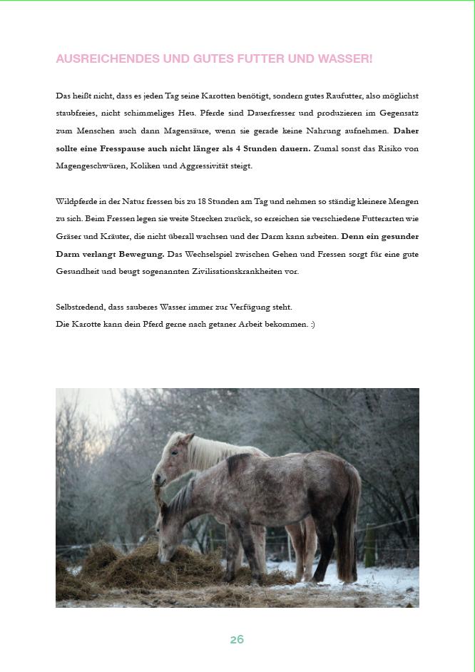 Leseprobe Seite 44-45